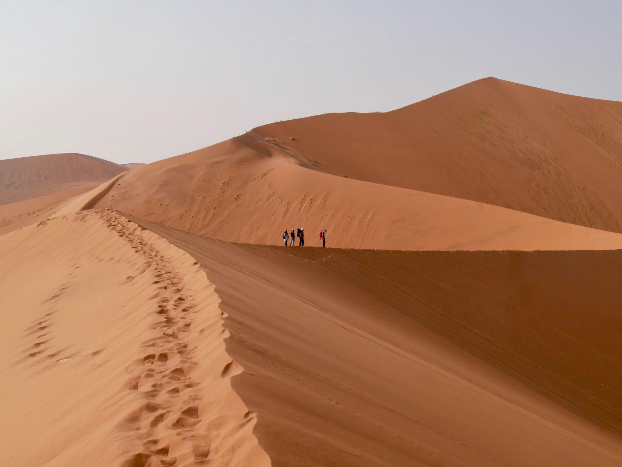 La crête de Big Daddy dans le désert du Namib