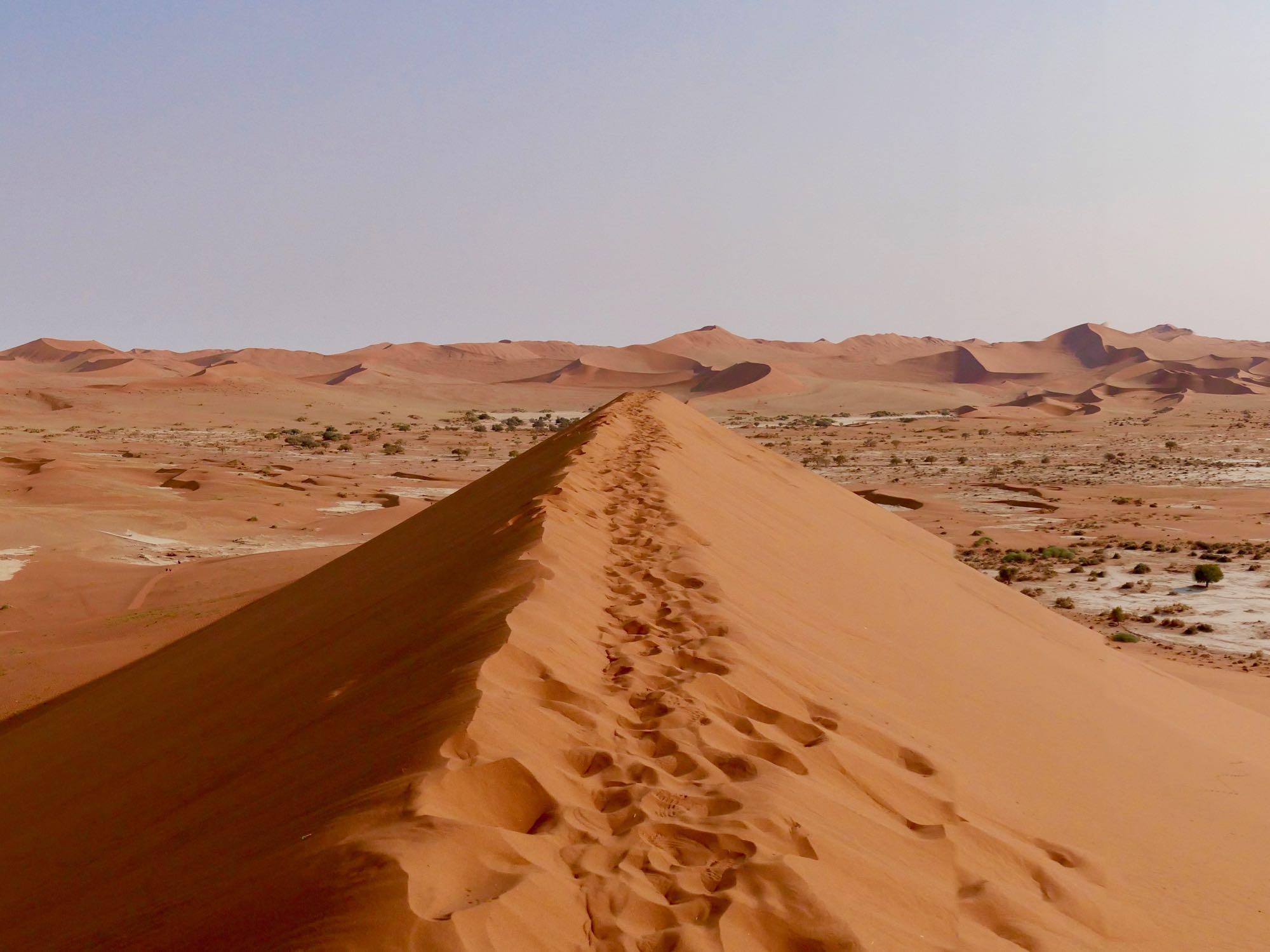 La vue des dunes du Namib depuis Big Daddy