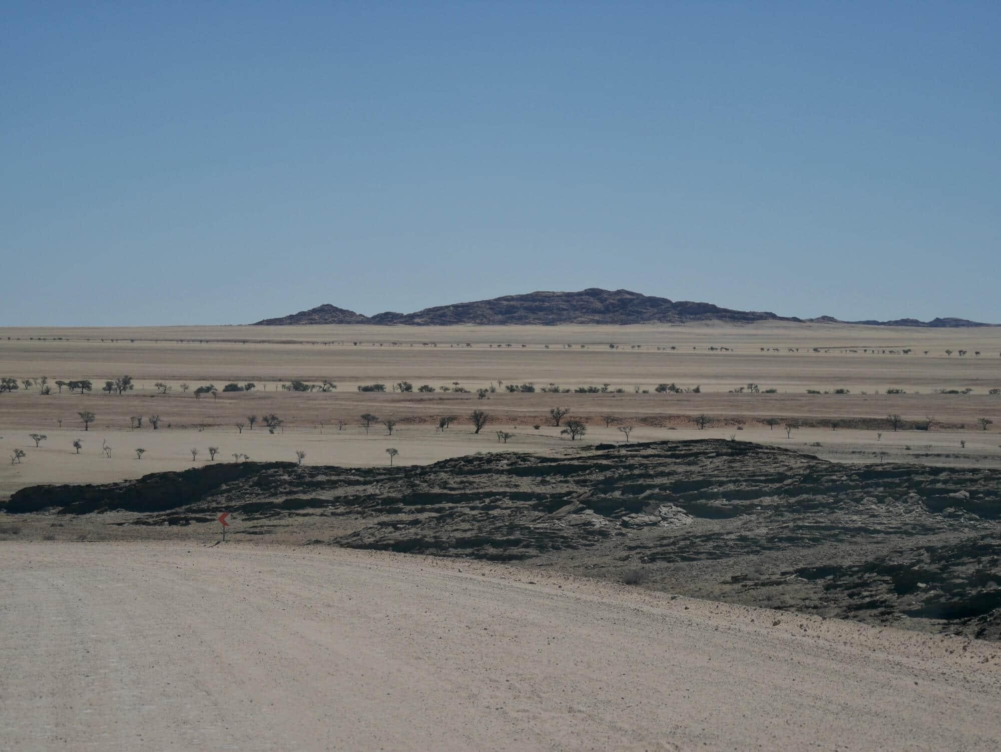 Vue de la savane depuis les pistes de Namibie