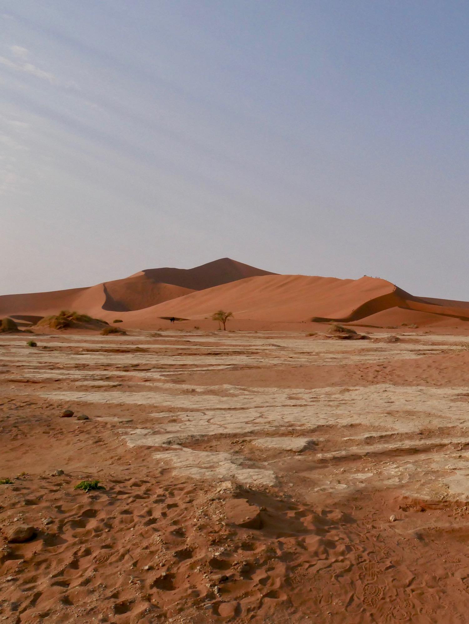 La majestueuse Big Daddy dans le désert du namib