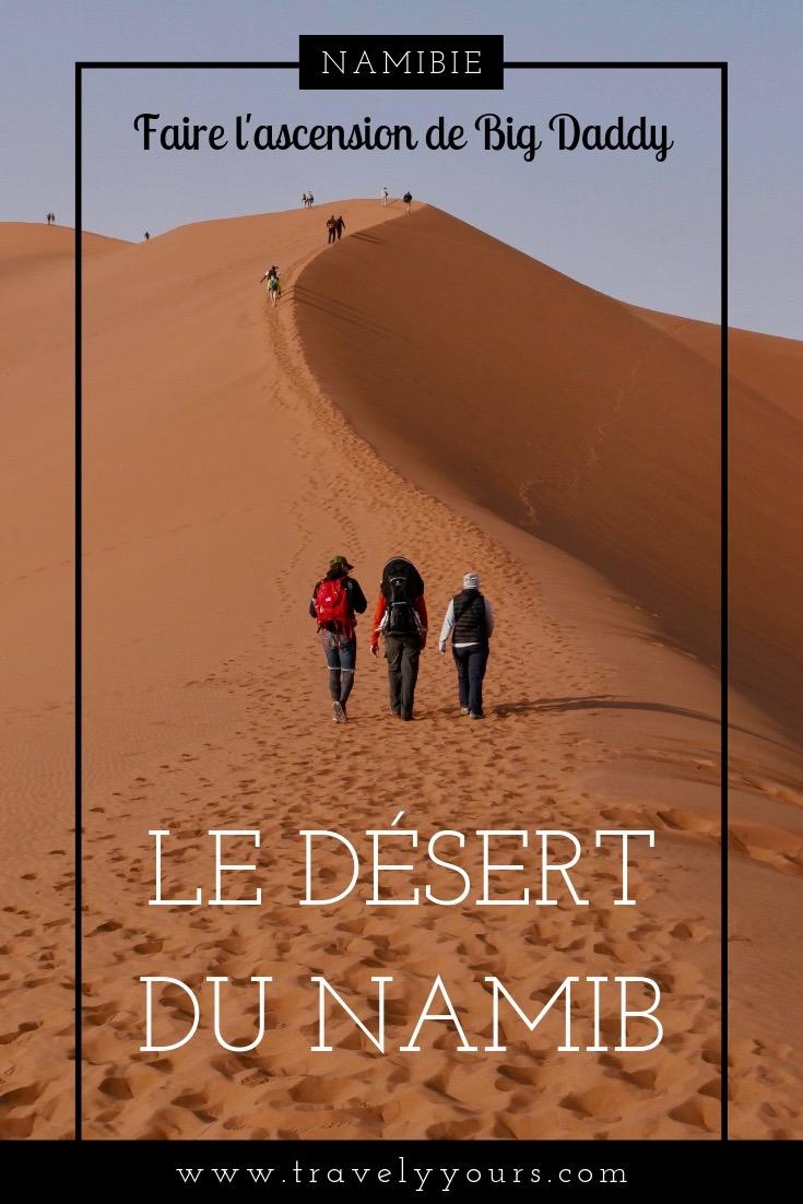 Epingle Pinterest Big Daddy et désert du Namib