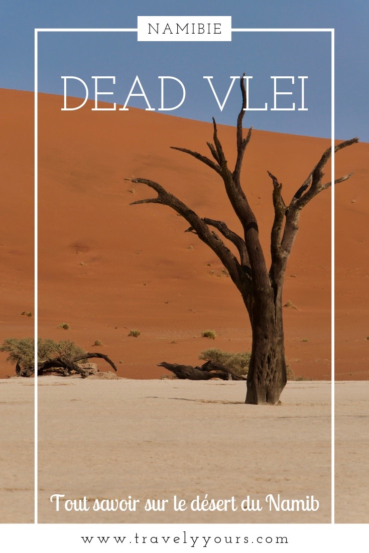 Epingle Pinterest Dead Vlei et désert du Namib
