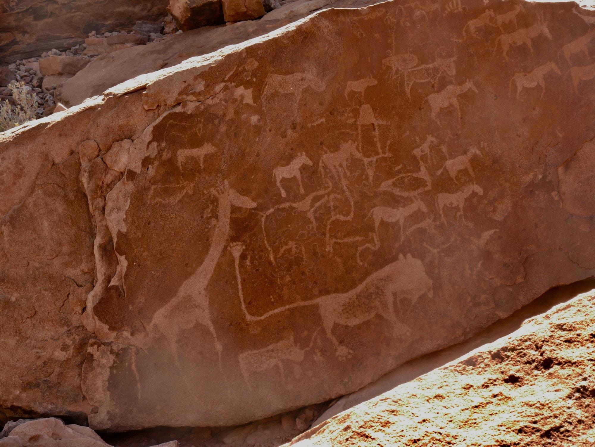 """Peinture rupestre """"Lion man's"""" de Twyfelfontein"""
