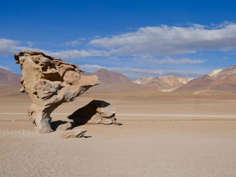 Arbol de Piedra - Sud Lipez Bolivien