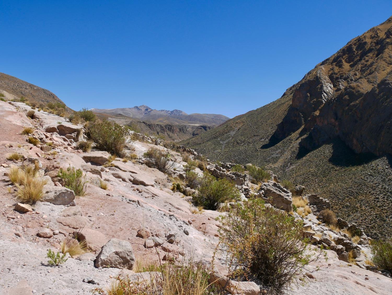 Vue sur les montagnes enneigées à Cayara