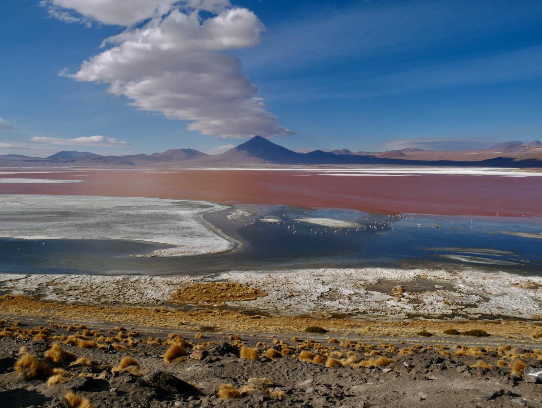 Laguna Colorada - Sud Lipez Bolivien