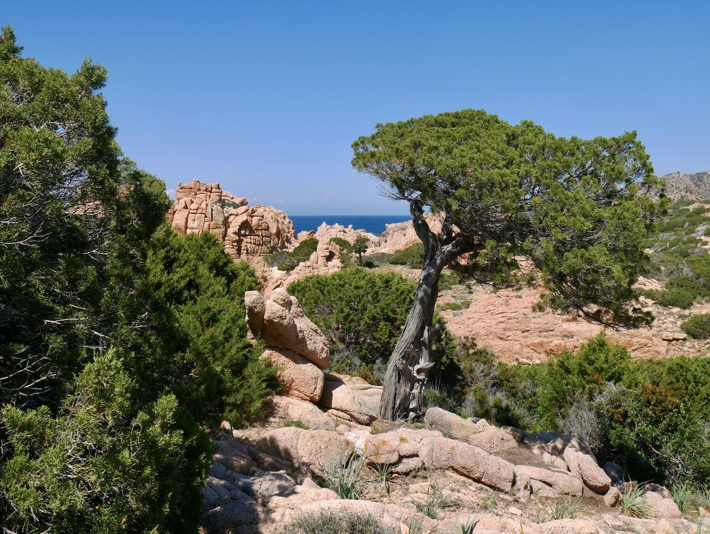 Randonnée entre roches granitiques, végétation et mer Méditerranée en Sardaigne